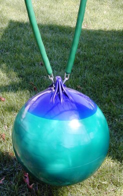 Buoy Ball / Trapeze Bar Swing